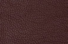 Magnificent - Burgundy 1004282